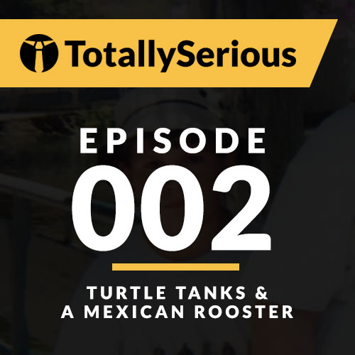 Episode #002: Turtle Tanks and a Mexican Rooster